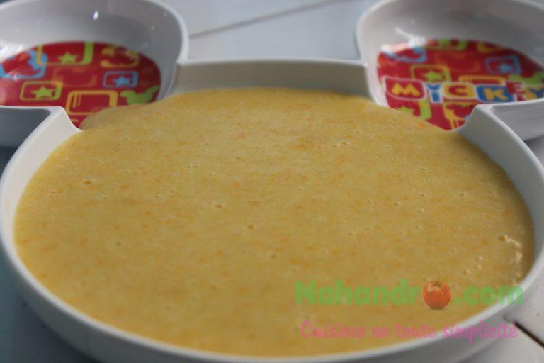 Purée de légumes au riz pour bébé à partir de 6 mois